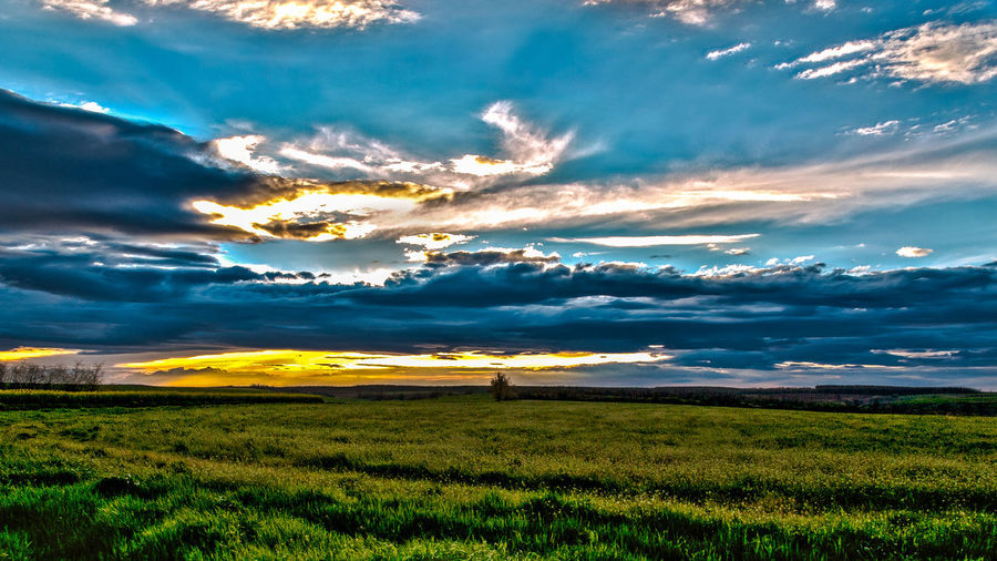 Sunset & Clouds Beauty In Nature Blue Cloud - Sky Cloudy Countryside Day Field Grass Landscape Nature Non-urban Scene Outdoors Rural Scene Sky Tranquil Scene Tranquility