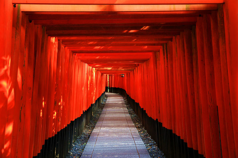 Cultures Day In A Row Japan Japanese Culture Japanese Temple No People Pattern Red Temple The Way Forward Tori Simplicity Tori Gate Japanese Shrine Japan Lovers Japan Photos Japan Photography Kyoto Red Color Torii Gates Miles Away Neighborhood Map