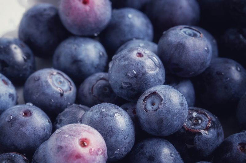 Blueberries Food And Drink Food Healthy Eating Wellbeing Full Frame Fruit Berry Fruit Freshness Backgrounds Blueberry Abundance No People Large Group Of Objects Still Life Close-up Organic Indoors  Heap Day
