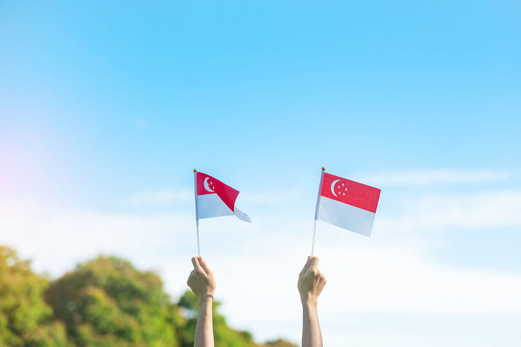 Low angle view of hand holding flag against sky