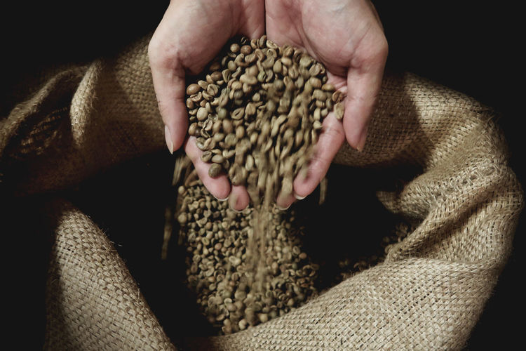 Close-Up Of Cupped Hands Holding Raw Coffee Beans Over Burlap Sack