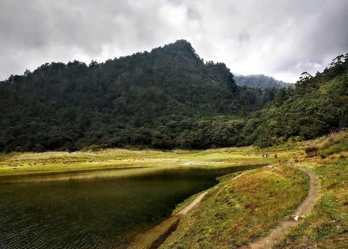 Mountain Landscape Nature Cloud - Sky Outdoors No People Tree Beauty In Nature Mountain Range Scenics Pinaceae Day Forest Travel Destinations Sky Tree Area Rural Scene