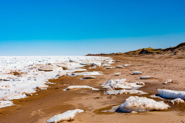 Frozen north Atlantic ocean pack ice off Cavendish Beach in Prince Edward Island National Park, PEI, Canada Cavendish Beach North Atlantic Ocean Frozen Pack Ice Shore Beach Pei Prince Edward Island Prince Edward Island Canada Prince Edward Island National Park Canada Landscape Dunes Sand Sandy Beach Winter Wintertime Clear Sky Ocean Nature Outdoors Sky Blue Scenics - Nature Tranquil Scene Beauty In Nature Tranquility No People Non-urban Scene Environment Water Idyllic Remote