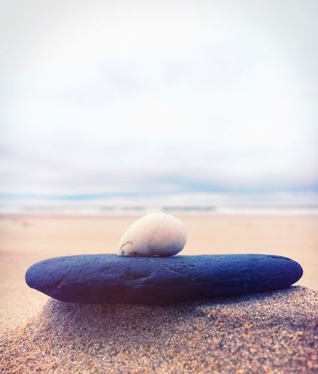 Nature Sky No People Close-up Water Sea Tranquility Beauty In Nature Horizon Over Water Beach Outdoors Day Shell Nature Photo Of The Day Balance Sea And Sky Seaside Tranquility Peaceful