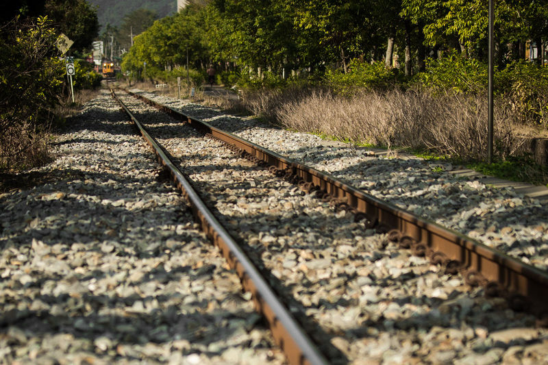 Broken Stone Diminishing Perspective FAR AWAY Nature No People Outdoors Rail Transportation Railroad Tie Railroad Ties Railroad Track Surface Level Train Transportation Tree Vanishing Point