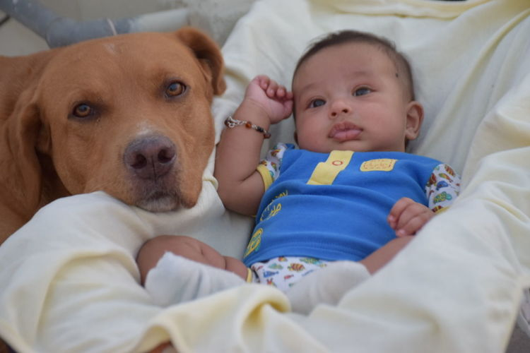 Animal Photography Cute Cute Pets Dogs And Kids Dogs&babies Dogslife Happiness Innocence Kidsphotography My Dogs Are Cooler Than Your Kids Two Is Better Than One
