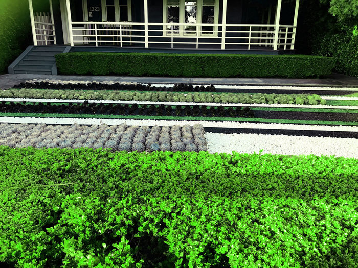 High angle view of railroad tracks in garden