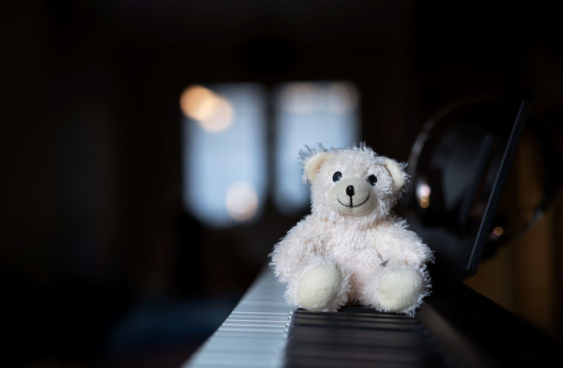 Stuff toy on piano