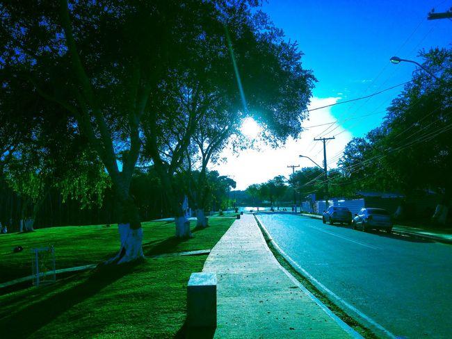 Nature Parque  University UFAC Acre Brasil ♥ Amazonia