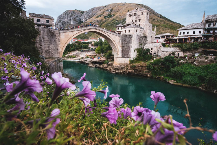 Arch bridge over river amidst buildings