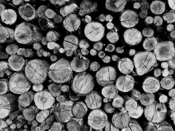 Beautifully Organized Wood Backgrounds Stack Log Timber Woodpile Heap Wood - Material Forestry Industry Lumber Industry Deforestation Large Group Of Objects No People Close-up Day (null)In A Row