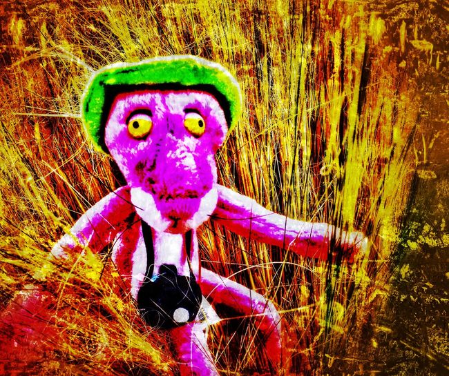 The pink making a run for it Portrait Close-up Day Stuff Toy Pink Panther Adopt To Save A Life Pink Panther Special Effects Donation = Sharing In Grass The Pink Panther Outdoors Toy Pink Panther On The Road