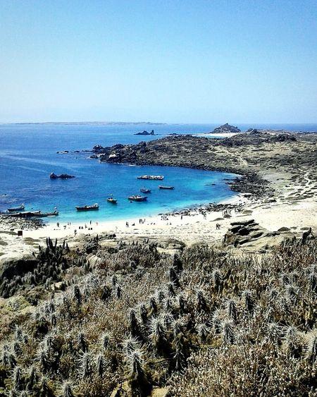 Blue / Phsofiareinoso Photography Mobilephotography FotografíaMóvil Fotografia Mar Sea Ocean Mare Island Paradise Travel Trips Landscapes Paessaggi Beach Sand Vacation Blue Nature