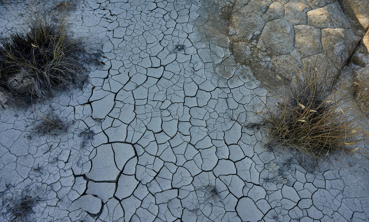Arid Climate Backgrounds Beauty In Nature Cala Calabria Cracked Desert Desertification Dry Full Frame Non-urban Scene Palizzimarina Plant Reflection Shelf Water