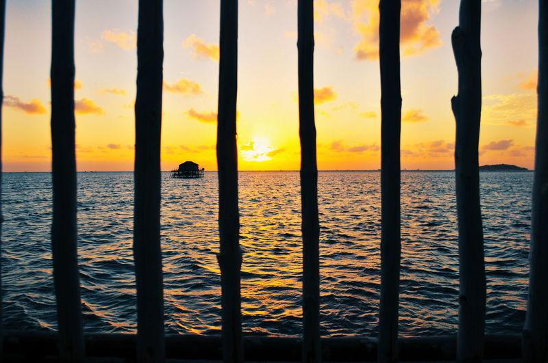 Sunrise in Bintan Island Sunrise EyeEmBestPics EyeEm Selects Summer Warm Illustration Orange Sunrise_sunsets_aroundworld Mood Water Sea Beach Silhouette Tree Sunlight Sand Sky Horizon Over Water Seascape Atmospheric Mood Romantic Sky Dramatic Sky Sun