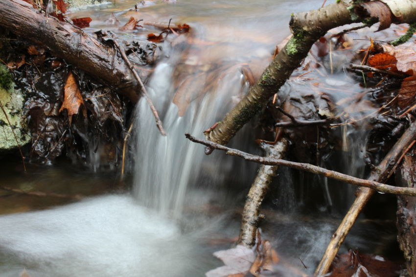 Long Exposure Creek Waterfall Long Exposure Nature Water Motion Nature Forest Beauty In Nature Canon 1300d Icy River Stream Close Up Macro Silky Water Perspectives On Nature