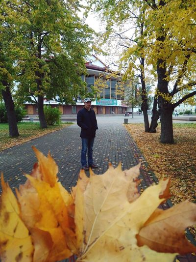 Rear view of man with yellow leaves in park