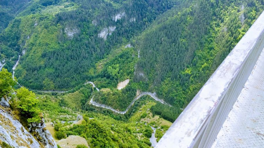 Plant Tree Aerial View Road Scenics - Nature Environment Nature Beauty In Nature Landscape High Angle View Transportation Mountain Day No People Green Color Non-urban Scene Forest Land Tranquility Outdoors