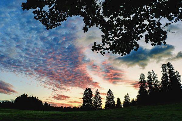 Tree Nature Sky Tranquil Scene Scenics Landscape Cloud - Sky Nature