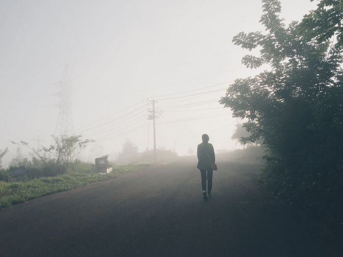 A girl walking alone Fog One Person Real People Plant Nature Tree Rear View Lifestyles Sky Day The Way Forward Direction Transportation Full Length Growth Walking Leisure Activity Standing Men Outdoors