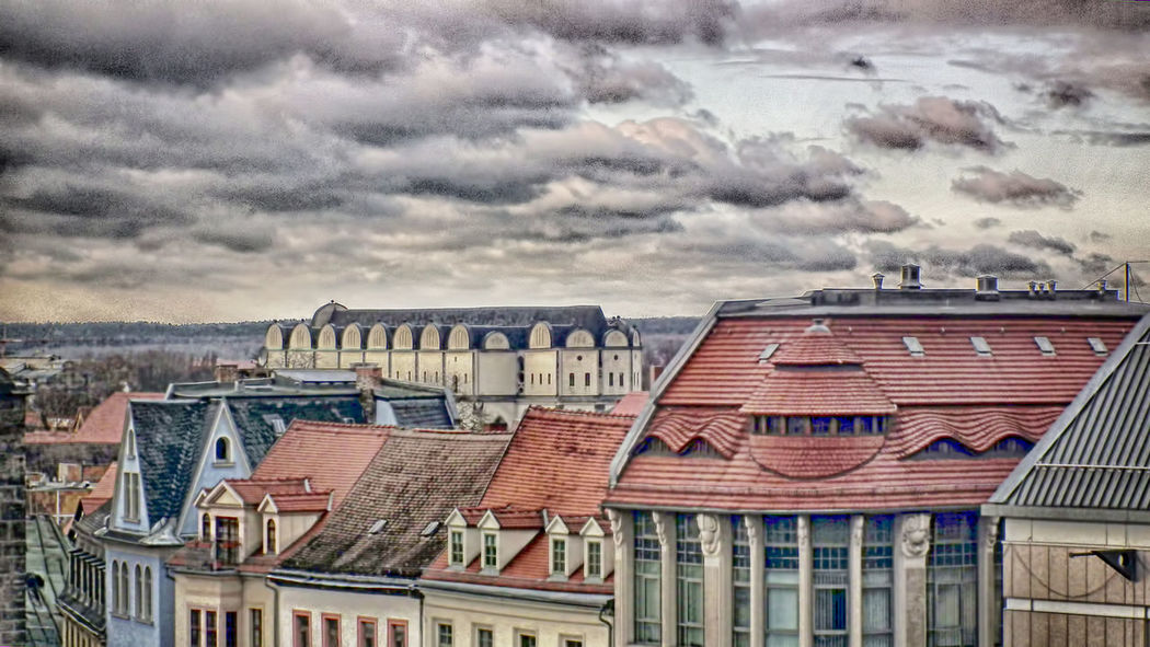 Der Dom zu Halle Halle (Saale) Salzstadt Architecture Building City Day Domestic Animals Dramatic Sky House TOWNSCAPE