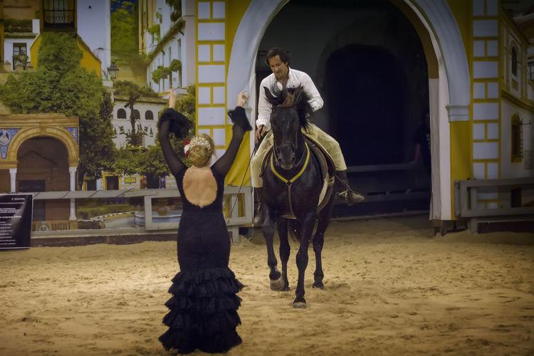 Horse Horseback Riding Horses Mundopark One Animal Show Turism