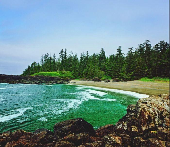 Landscape Pacific Rim Nationalpark Canada