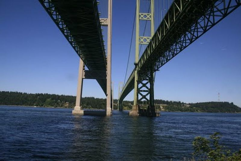 Tacoma Narrows Bridge. Photo taken from Amtrak passing under the bridge. Bridge - Man Made Structure Outdoors Travel Destinations Clear Sky Water Sky No People Blue Pacific Northwest  Tacoma_WA Amtrak Cascades