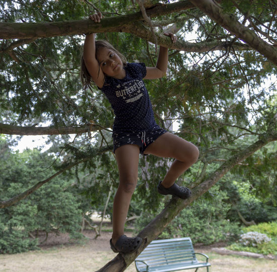Girl climbing tree Arms Raised Casual Clothing Climbing Climbing Trees Day Emotion Enjoyment Full Length Fun Happiness Leisure Activity Lifestyles One Person Outdoors Real People Tree Young Adult Young Women