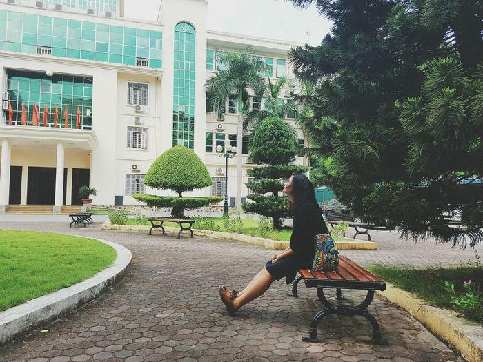 Green Green Fade Girl Grass Hanoi Vietnam  University Life University Campus