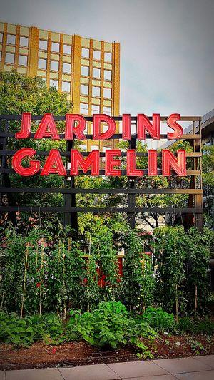 Jardin Jardins Jardins Gamelin Gamelin Garden