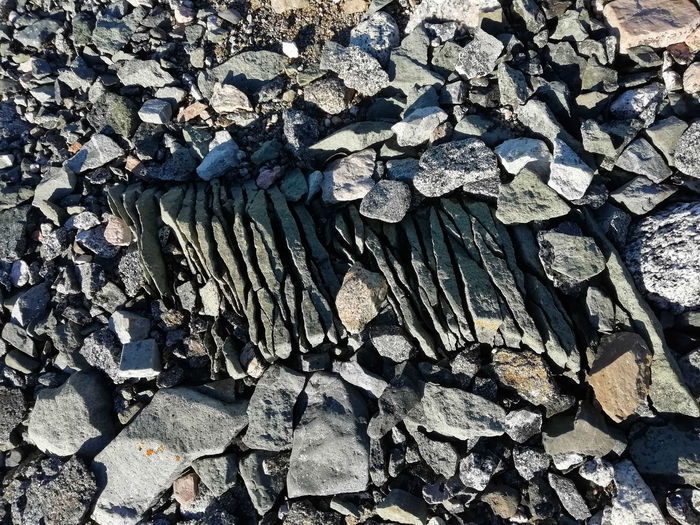 Backgrounds Full Frame No People Day Textured  Nature Rock Pattern Outdoors Abundance Solid Close-up Rock - Object Wood - Material High Angle View Large Group Of Objects Tree Stone - Object Rough Detail Ground