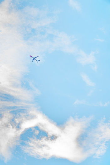 garden & flowers Aereo Air Vehicle Aircraft Airplane Blue Cloud - Sky Day Flug Flugzeug Flying Low Angle View Luftfahrt Mid-air Nature No People Outdoors Plane Sky Sky And Clouds Transportation Transportation Traveling Vapor Trail Viaggio Volo