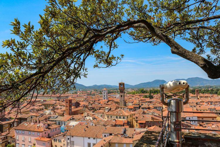 Lucca Nature