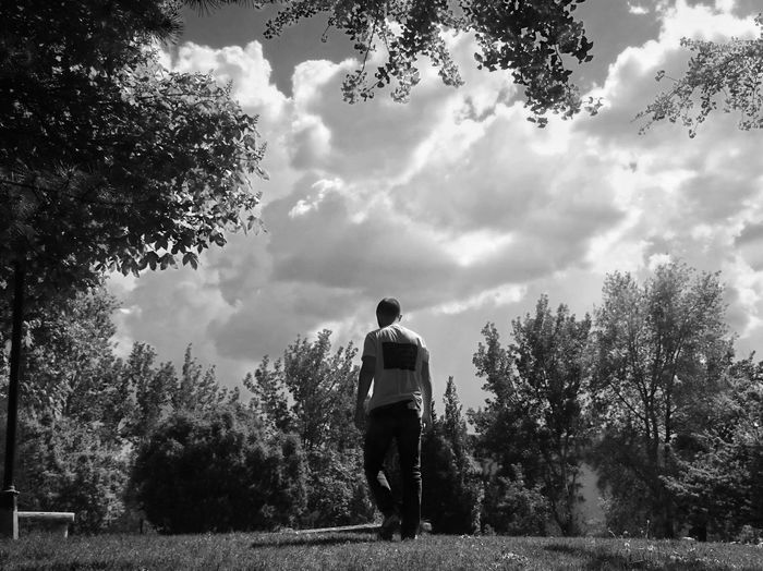 Rear view of man walking on land against trees