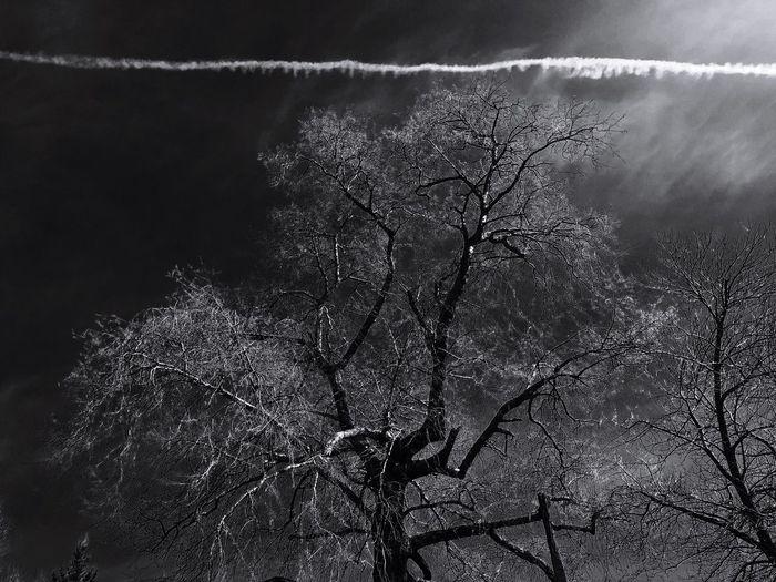 Nature Weather Outdoors Sky Blackandwhite Dark Daydreaming