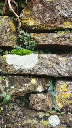 Steinmauer Efeu Efeu An Mauer Nature Textures Textures And Surfaces Backgrounds nature textures backgrounds