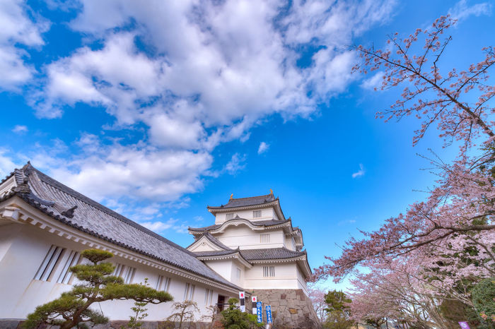 Castle Cherry Blossoms EyeEm Best Shots EyeEm Nature Lover EyeEmNewHere Architecture Belief Blue Building Building Exterior Built Structure Cherry Blossom Cloud - Sky Day Growth Low Angle View Nature No People Outdoors Place Of Worship Plant Religion Sky Spirituality Tree EyeEmNewHere