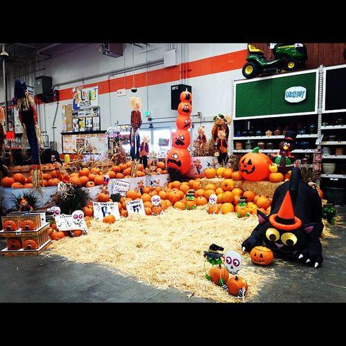 My work is amazing Loveit Halloweenspirit