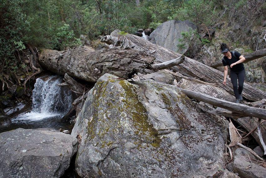 Nature Outdoors Hiking Trekking Hiking Adventures Nature Photography Leica Alpine National Park Australia Hiker Get Outside