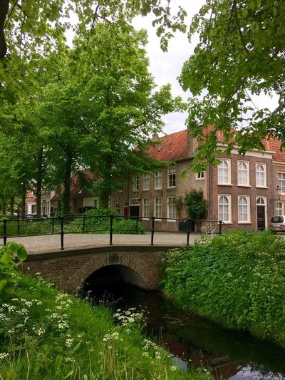 The beautiful city of Heusden - The Netherlands Architecture Heusdenvesting Heusden Built Structure Building Exterior Tree House Green Color Day Growth Outdoors No People Plant Grass Nature Sky The Great Outdoors - 2017 EyeEm Awards Neighborhood Map