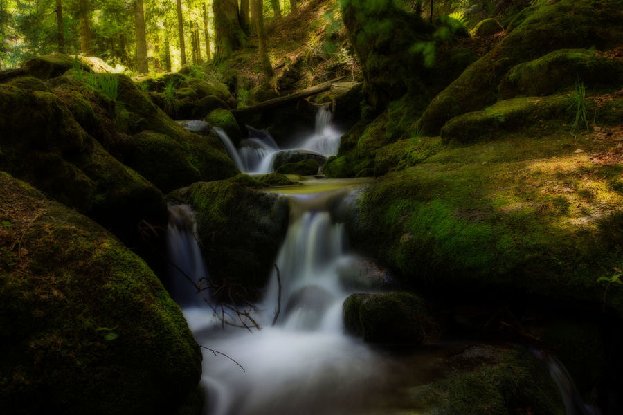 Beauty In Nature Blurred Motion Day Forest Idyllic Long Exposure Motion Nature No People Orton Effect Outdoor Photography Outdoors River Scenics Tranquil Scene Tranquility Tree Water Waterfall Woods