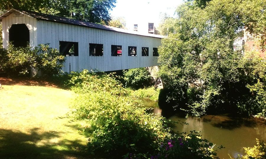 City Bridge - Man Made Structure Mobile Photography Check This Out Taking Pictures Covered Bridges Of Oregon Covered Bridge Taking Photos Cottage Grove, Oregon Summer2016 Bridge - Man Made Structure CoveredBridge Covered Bridge Over River Postcode Postcards