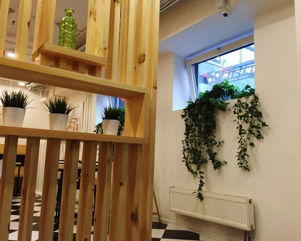 Interior Design Plants And Flowers Cafe Eating Out Dinner Time