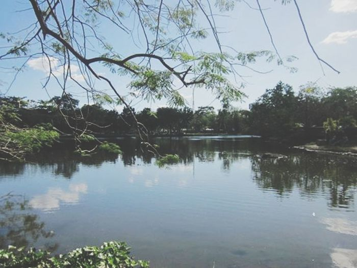 Enjoying Life Nature Places Philippines