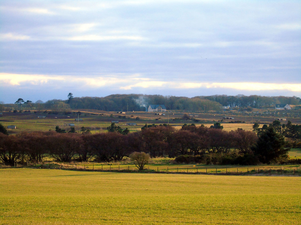Looking across the fields at Hopeman Beauty In Nature Cloud - Sky Cloudy Day Eye Em Scotland Field Field Fields Fieldscape Grass Green Color Horizon Over Land Landscape Nature No People Outdoors Remote Rural Scene Scenics Scotland Sky Tranquil Scene Tranquility Tree Uk
