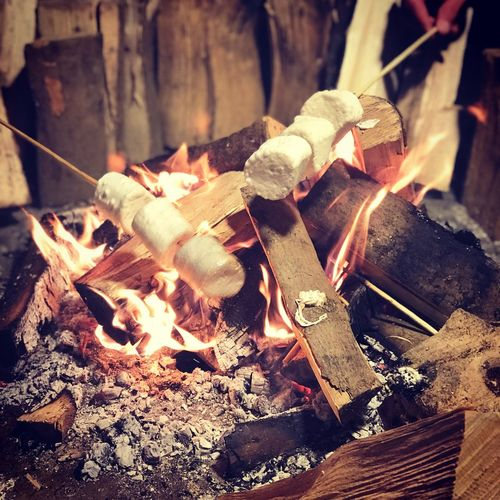 Marshmallow Toasting Toasting Marshmallows Marshmallows Happy New Year 2019 No People Close-up Still Life Indoors