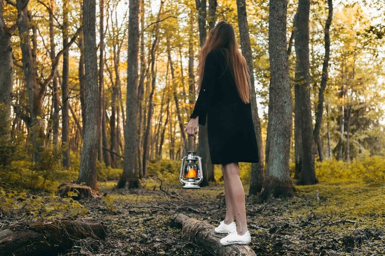 Full length of woman with oil lamp standing in forest