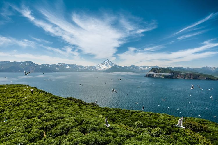 Остров Старичков Камчатка Nature Kamchatka Beauty In Nature Volcano Scenics - Nature Mountain Sky Beauty In Nature Water Nature Cloud - Sky Day Sea Plant Tranquil Scene Tranquility Bay Green Color Land No People Outdoors Mountain Range Environment The Great Outdoors - 2019 EyeEm Awards The Great Outdoors - 2019 EyeEm Awards