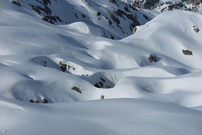 Nature Mountain Contrasti Grigna Settentrionale